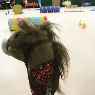 Derby Horses at WIC farmers market 2018