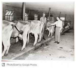 Dairy inspection