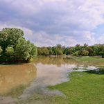Handling Flooding with Private Water and Sewage Systems